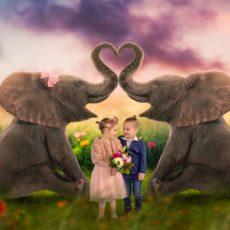 Valentijn actie | Fairy Tale Art Design